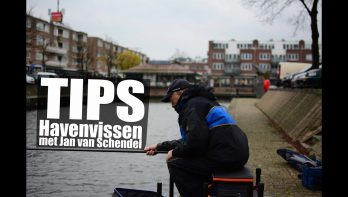 Havenvissen: tips van Jan van Schendel