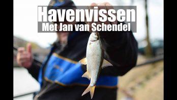 JVS Cityfishing: de haven van Huizen