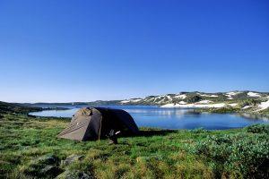 Een groot aantal meren, rivieren en beken maken nationaal park Hardangervidda een goede keuze voor iedereen die op visvakantie gaat in Noorwegen. Naast forel is er ook poolforel, elrits en grote marene te vinden.