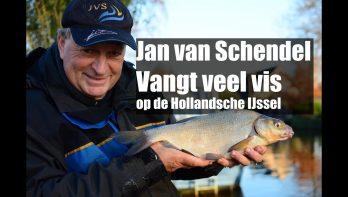 Veel witvis op de Hollandse IJssel
