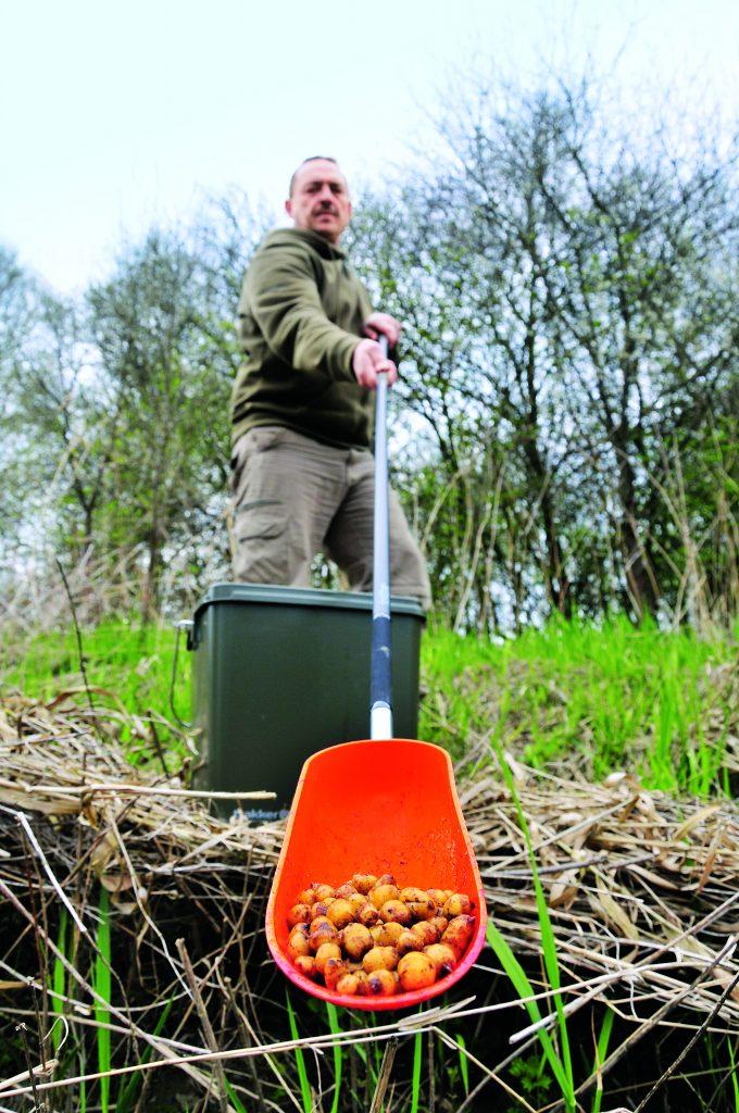 Tijgernoten voor graskarper