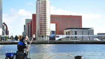 Witvissen in Rotterdam (2 video's)