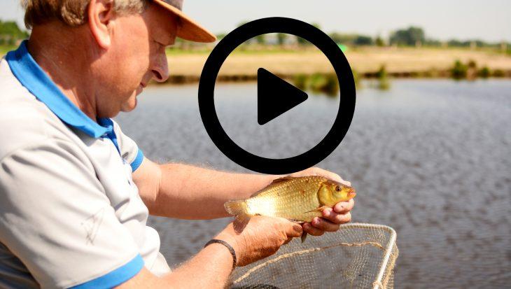 Tactisch commercial vissen met Jan van Schendel