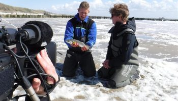 Stem komende zondag 20 mei om 9.00 uur je televisie weer af op RTL 7 voor de derde aflevering van VIS TV XL. Hierin krijg je tips en tricks van Frank Peene, wereldkampioen zeevissen. Daarnaast heeft de karper dit keer een hoofdrol.