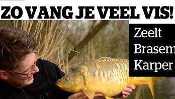 Zo vang je veel vis!