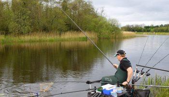 Sportvisparadijs Ierland met ongekende mogelijkheden voor witvissers, die zonder zonder visvergunningen mogen vissen. Catch and Release is de enige regel voor de witvissers.