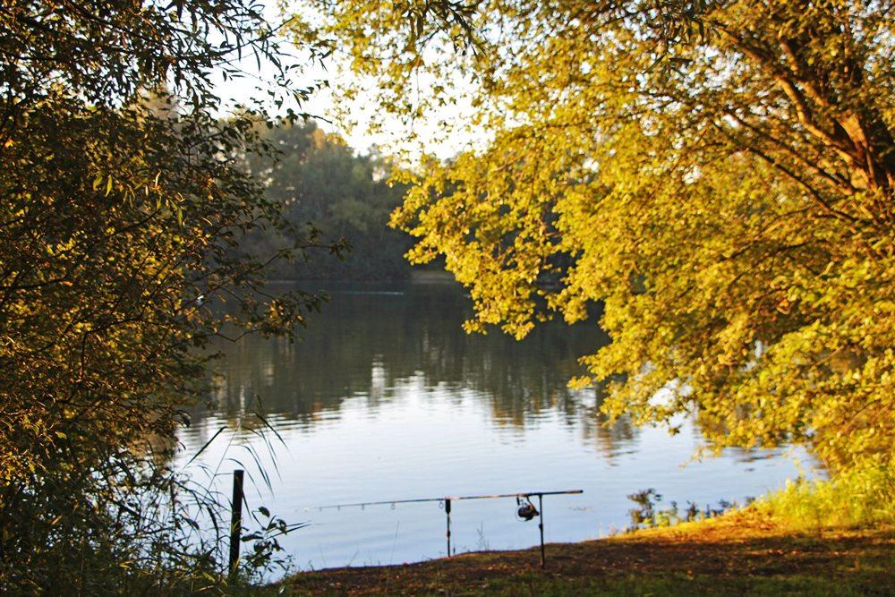 Het meer van 1,5 hectare (het complex is 2,5 hectare groot) biedt veel ruimte en om deze ruimte zo optimaal mogelijk te gebruiken, zijn er maximaal vier vissers per sessie toegestaan, zodat elke visser voldoende water heeft.