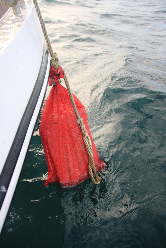De zak met rubby dubby hangt overboord om een voerspoor te maken.