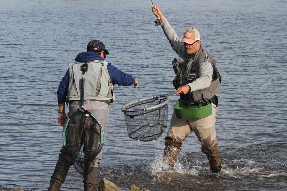Bij de finale ging het om de hoeveelheden gevangen vis, dus snelheid was geboden. De deelnemers visten meerdere sessies en moesten in de andere sessies controleren en vangsten noteren.