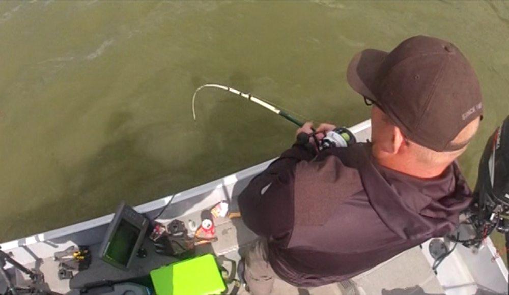 De vis neemt de boot meermalen op sleeptouw.