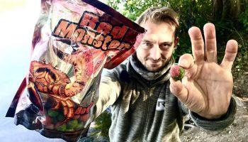 Robin Red en Monster Crab behoren tot de meest effectieve ingrediënten voor boilies die beschikbaar zijn.