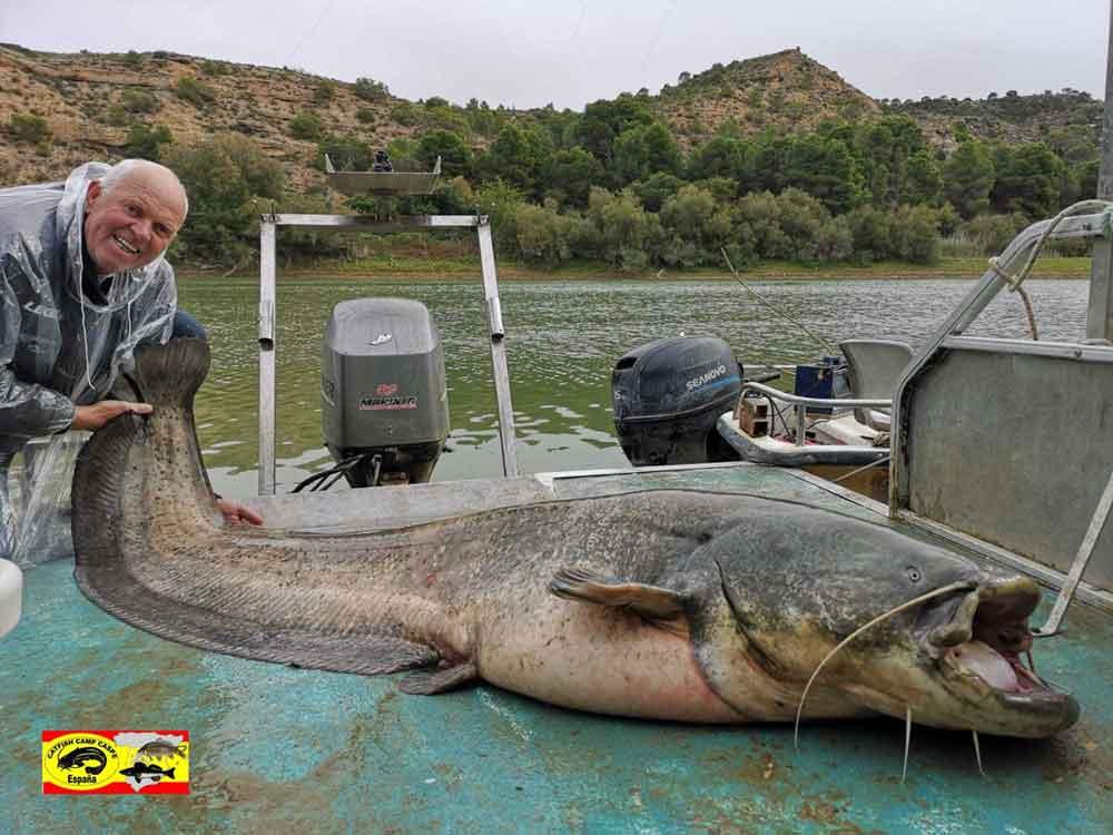 Het seizoen zit er weer bijna op, we hebben ook dit jaar weer veel en grote vis gevangen, zowel meerval en karper.