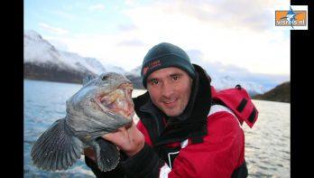 Noord-Noorwegen: Loppa - unieke, beschutte locatie