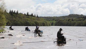 De Franse firma Sensas is al vele jaren een trouwe sponsor van de evenementen van Beet, waaronder natuurlijk ook de King of Clubs viswedstrijd in Ierland.
