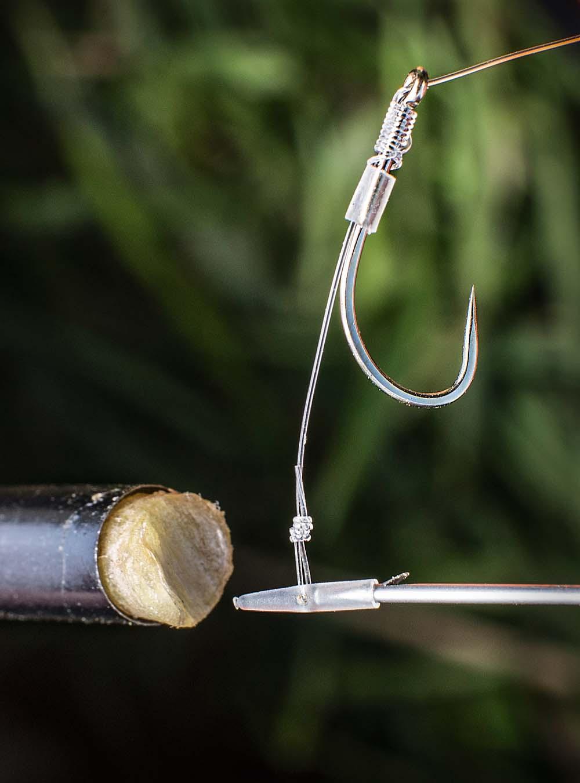 Knoflook vissen