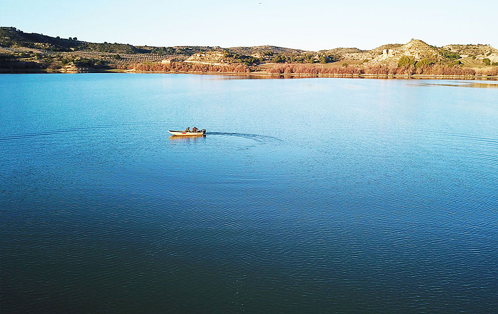 Meerval Ebro