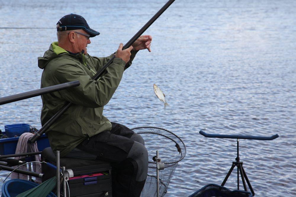 Soms kun je je beter richten op de vangst van (veel) kleine vis.