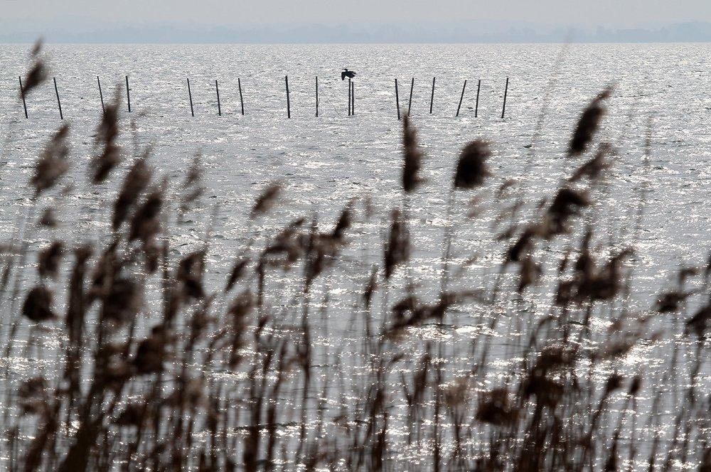 Alle activiteiten zijn terug te vinden op www.weekvanonswater.nl.