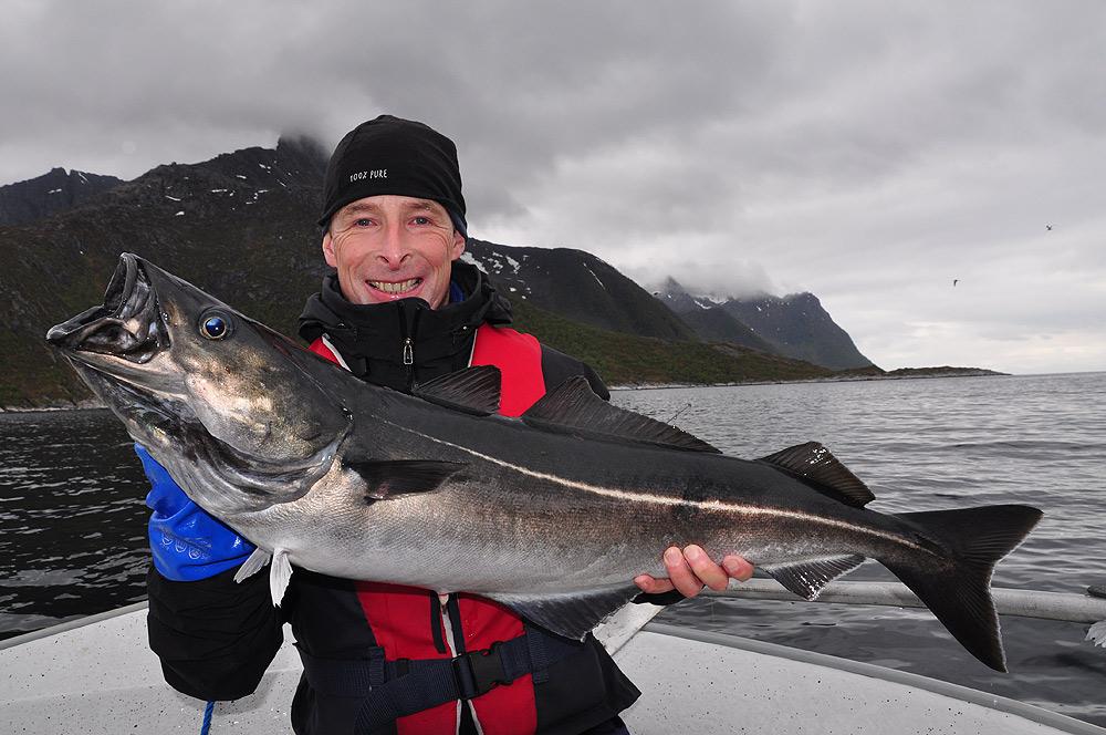 Senja Noord-Noorwegen