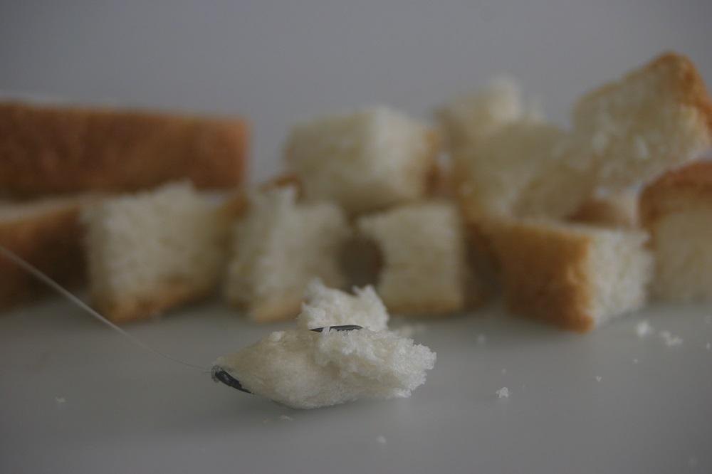 Wat neem je mee brood