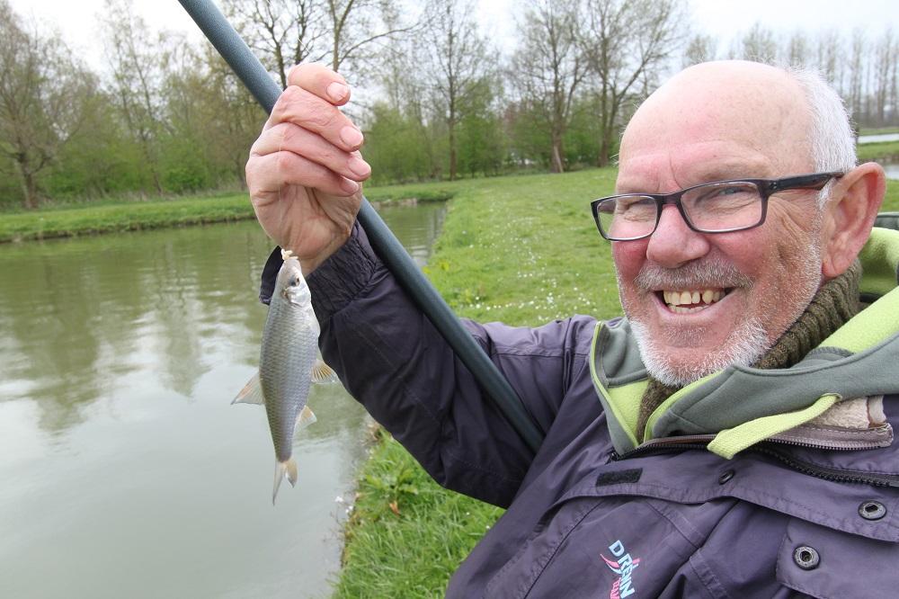 Voorn vissen in voorjaar