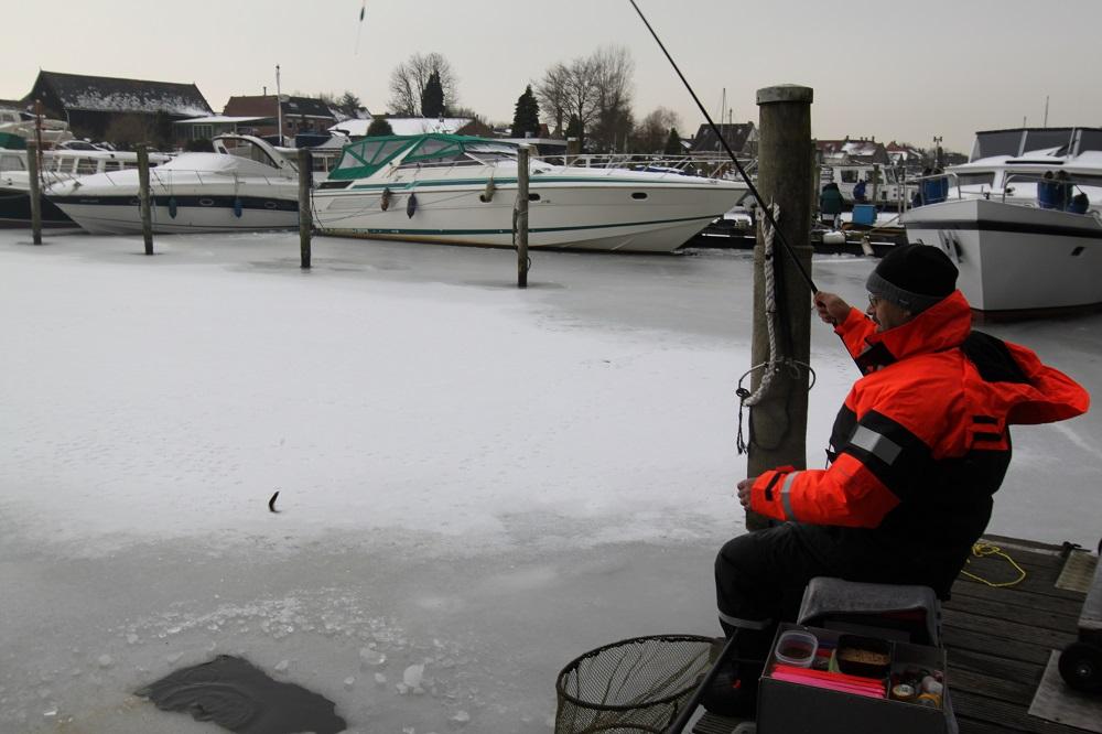 Voorn vissen in winter