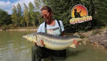 Vissen op Domaine des Pins - Grote steuren!