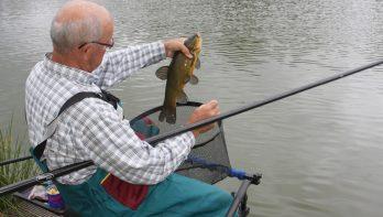 Robuust vissen met Sensas