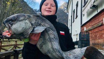 Prachtige vissen op de Lofoten...