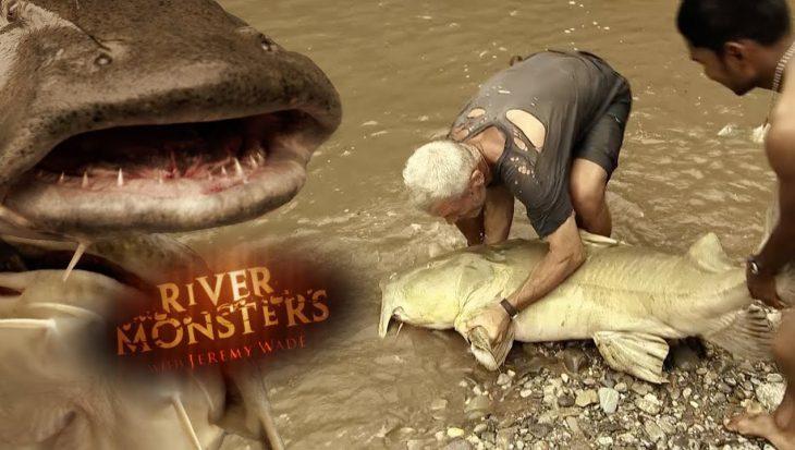 Huiveren met Jeremy Wade in 'Scariest Fish' van River Monsters