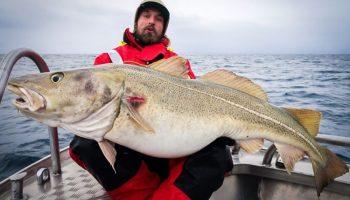 In het Noorse Nappstraumen zit een Cordes-reisgezelschap Nederlandse sportvissers in quarantaine. Gelukkig mogen zij wel vissen, maar waarschijnlijk een week langer dan gepland...