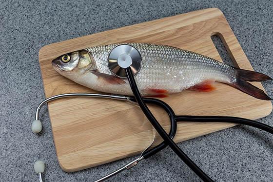 Nieuws The Carp Specialist voor karpervissers