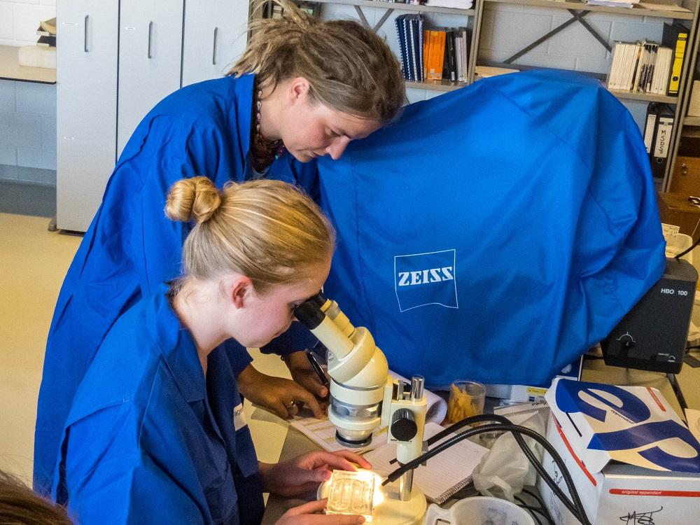 Bernike van Werven, begeleid door Susanne Kühn, onderzoekt de maaginhoud van vis onder een microscoop (Foto: J.A. van Franeker).
