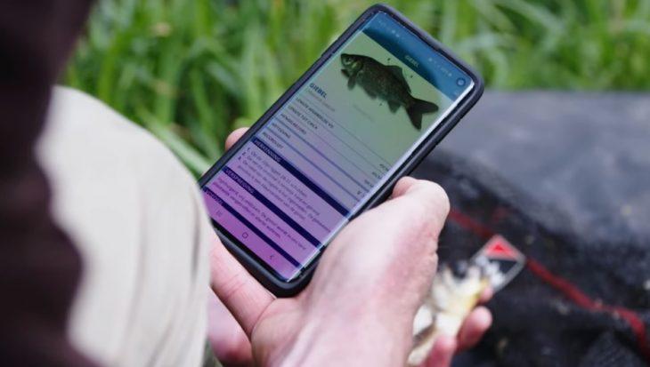 Handige Vissenscanner onderdeel van de Vissengids app