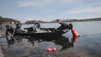 Dropshotten met de 'aquascope' op Zweedse tarbotten