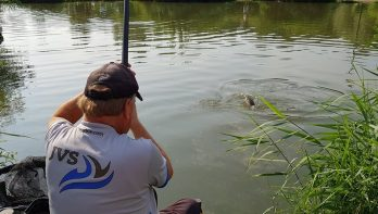 Vissen op Toms Creek