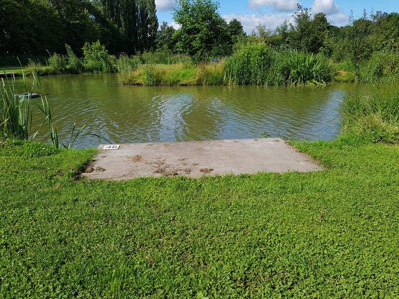 Vissen op snake lake berenkuil