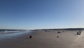 Zeeviswedstrijd 'van Cadzand tot Schiermonnikoog'
