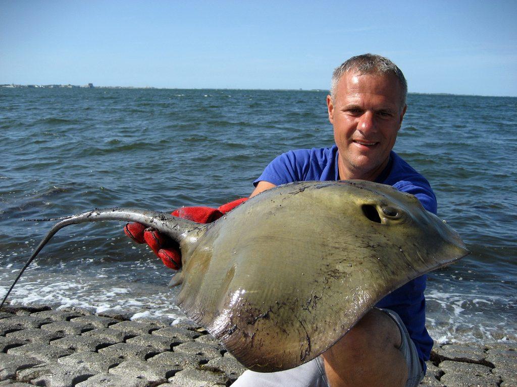 gercht vissen op pijlstaartrog
