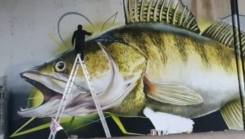 Snoekbaars graffiti langs de Oder in Polen