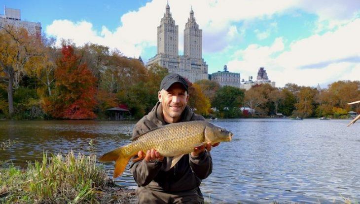 Simon Crow goes USA: Urban carp from Central Park