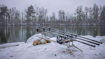La Plaine des Bois: karpervissen vanuit een warme lodge