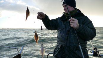 Loodvrij bootvissen op schar en wijting
