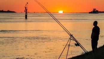 Zeevissen Tips & Tricks: let op het getij en de stroming