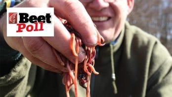 Vissen met wormen in gesloten tijd?