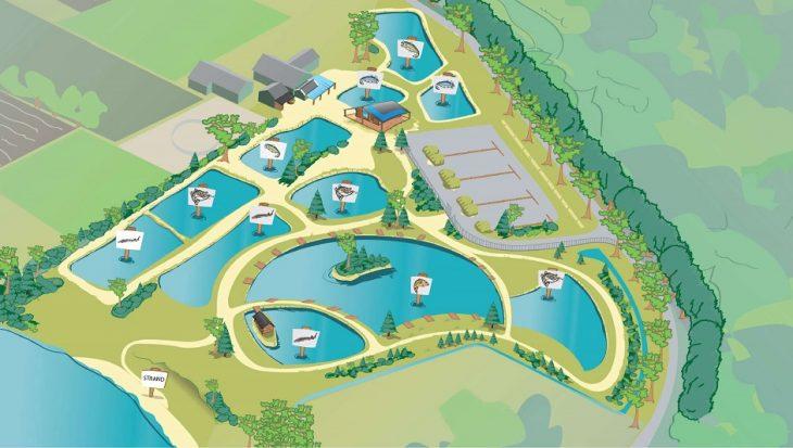 FORELVIJVERS: Toms Creek voor alle visavonturen