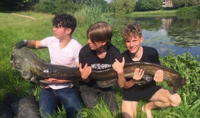Tristan (16) vangt 185 cm lange meerval in Deventer stadswijk