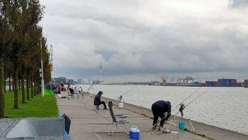 Rijnmond.nl reportage: de vissers van de Sluisjesdijk