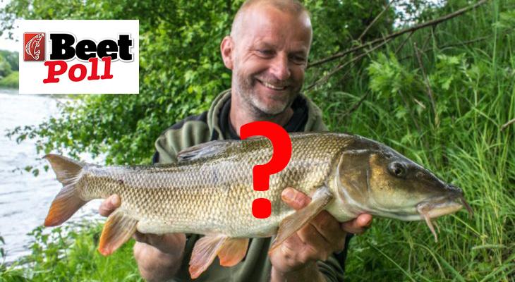Welke vissoort staat hoog op jouw verlanglijst?