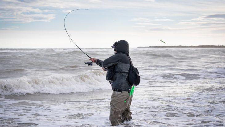 Bassterra Sea Bass: totale controle bij het zeebaarsvissen